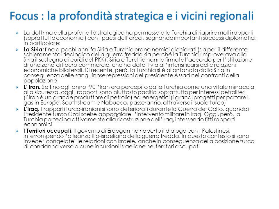 Focus : la profondità strategica e i vicini regionali