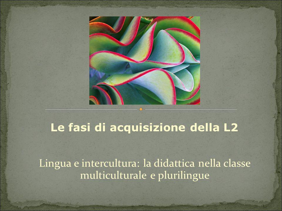 Le fasi di acquisizione della L2