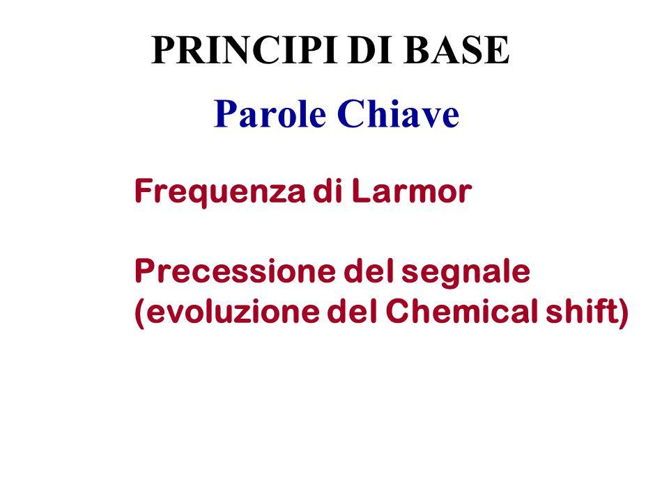 PRINCIPI DI BASE Parole Chiave Frequenza di Larmor
