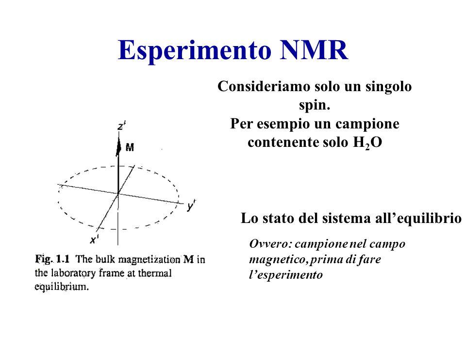 Esperimento NMR Consideriamo solo un singolo spin.