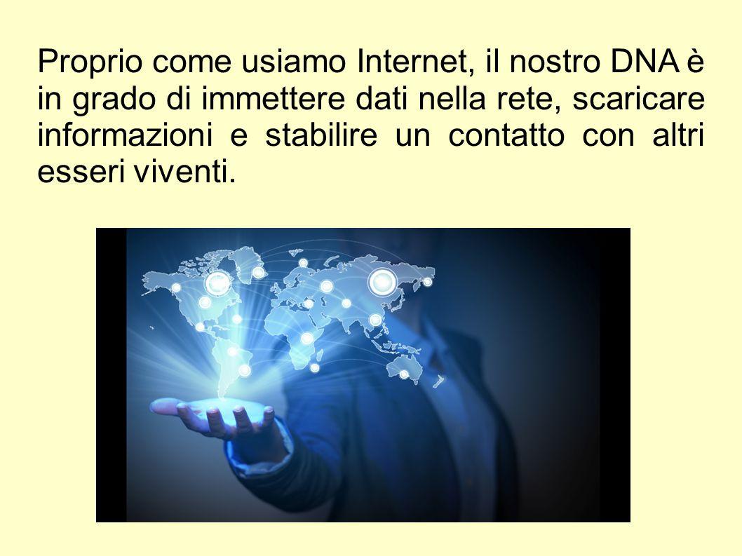 Proprio come usiamo Internet, il nostro DNA è in grado di immettere dati nella rete, scaricare informazioni e stabilire un contatto con altri esseri viventi.
