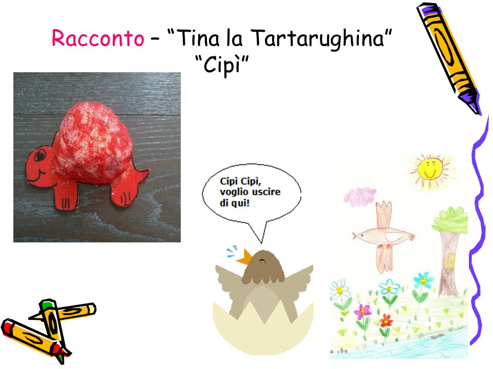 Racconto – Tina la Tartarughina Cipì