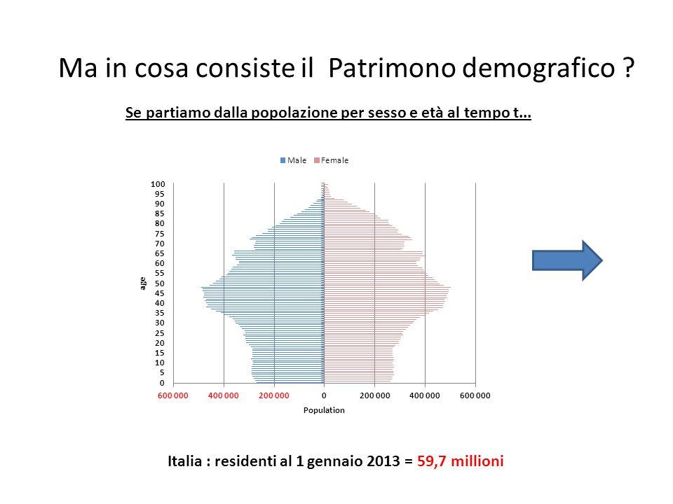 Ma in cosa consiste il Patrimono demografico