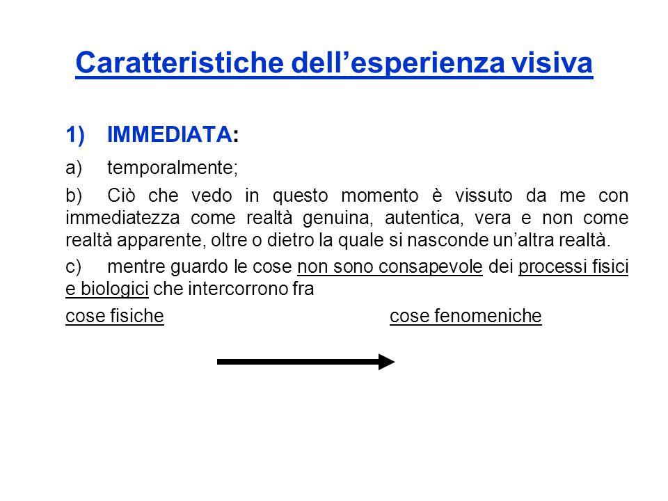 Caratteristiche dell'esperienza visiva