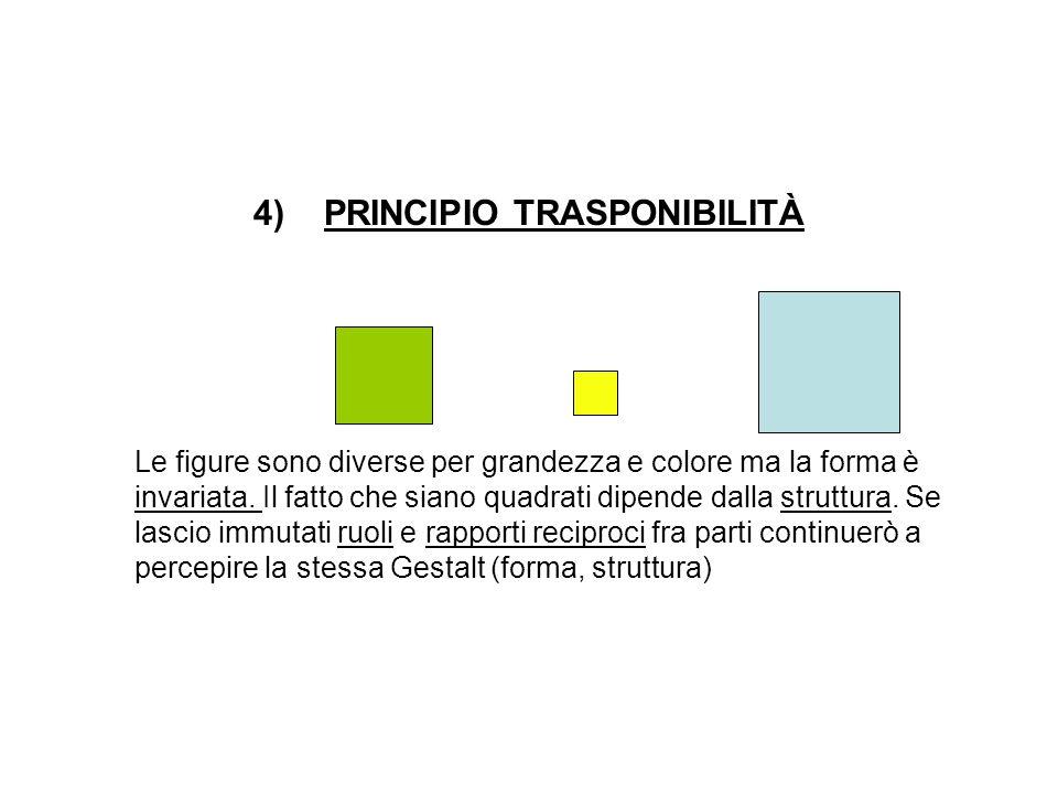 PRINCIPIO TRASPONIBILITÀ