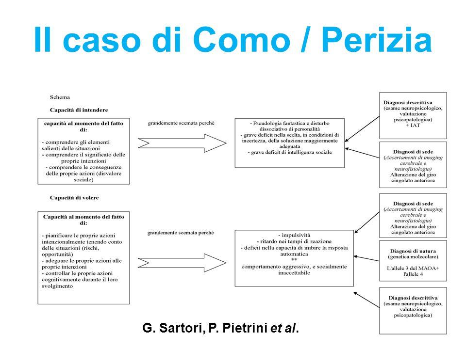 Il caso di Como / Perizia