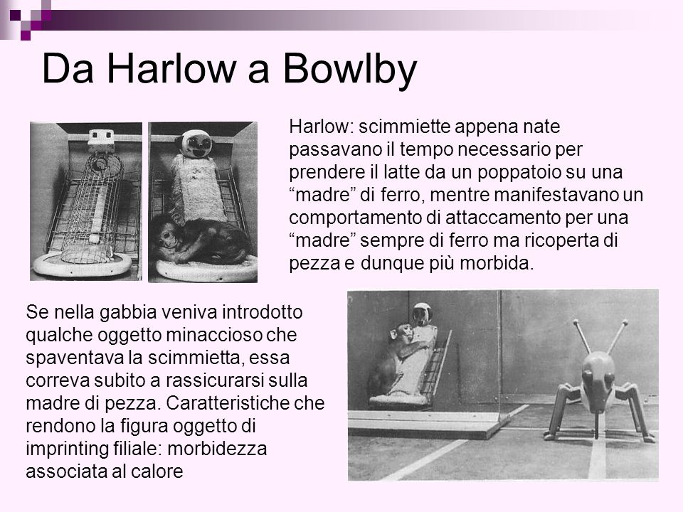 Da Harlow a Bowlby