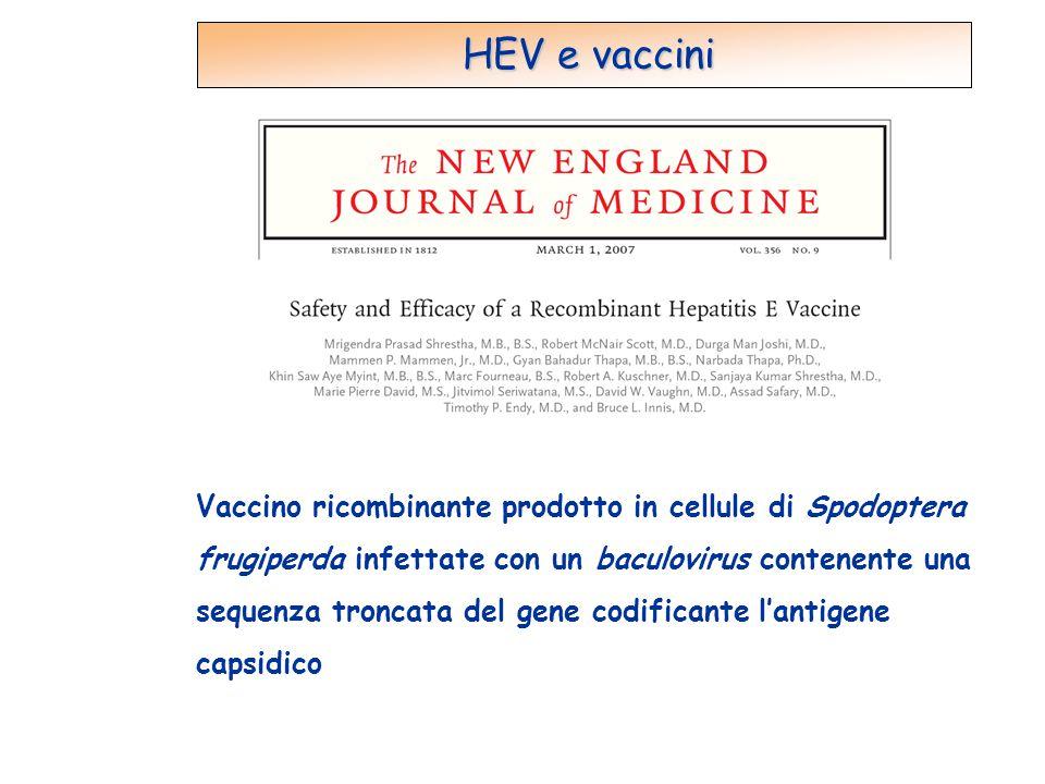 HEV e vaccini