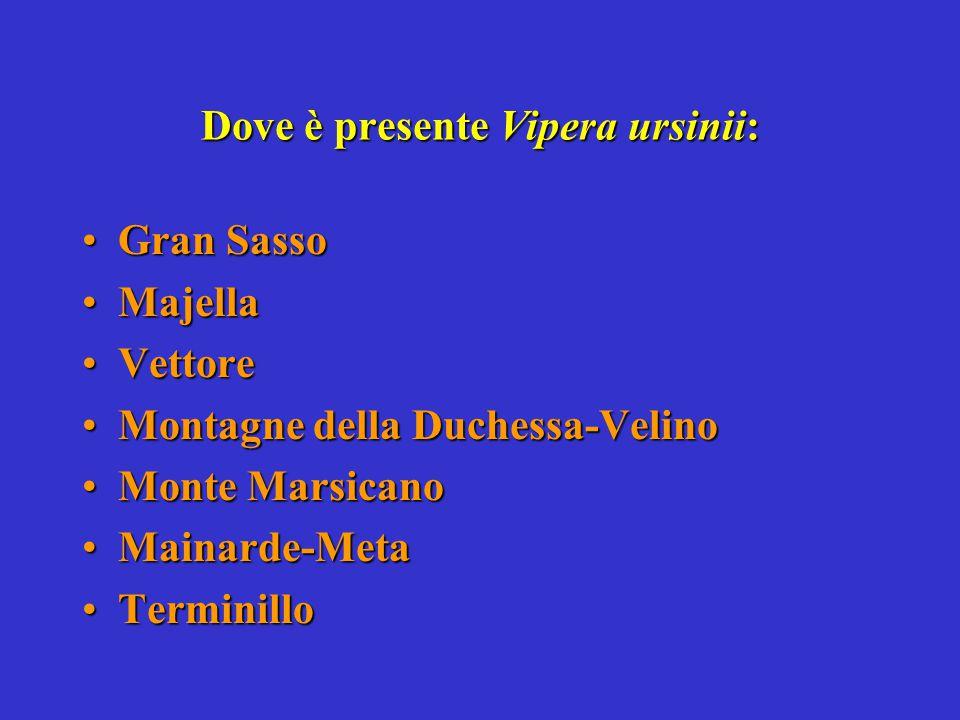 Dove è presente Vipera ursinii: