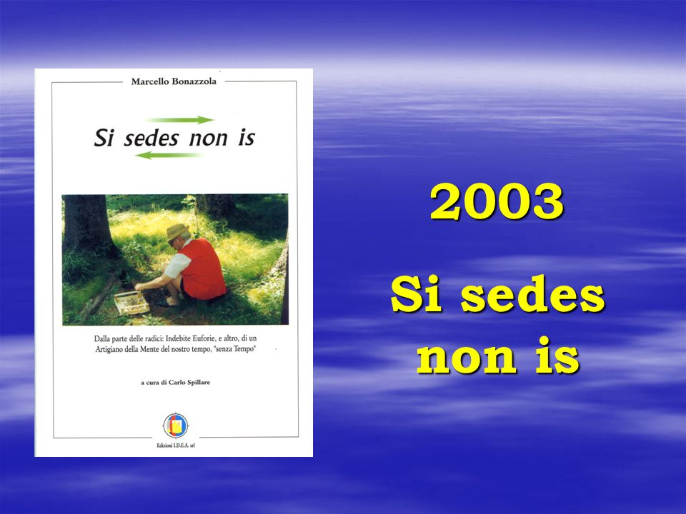 2003 Si sedes non is