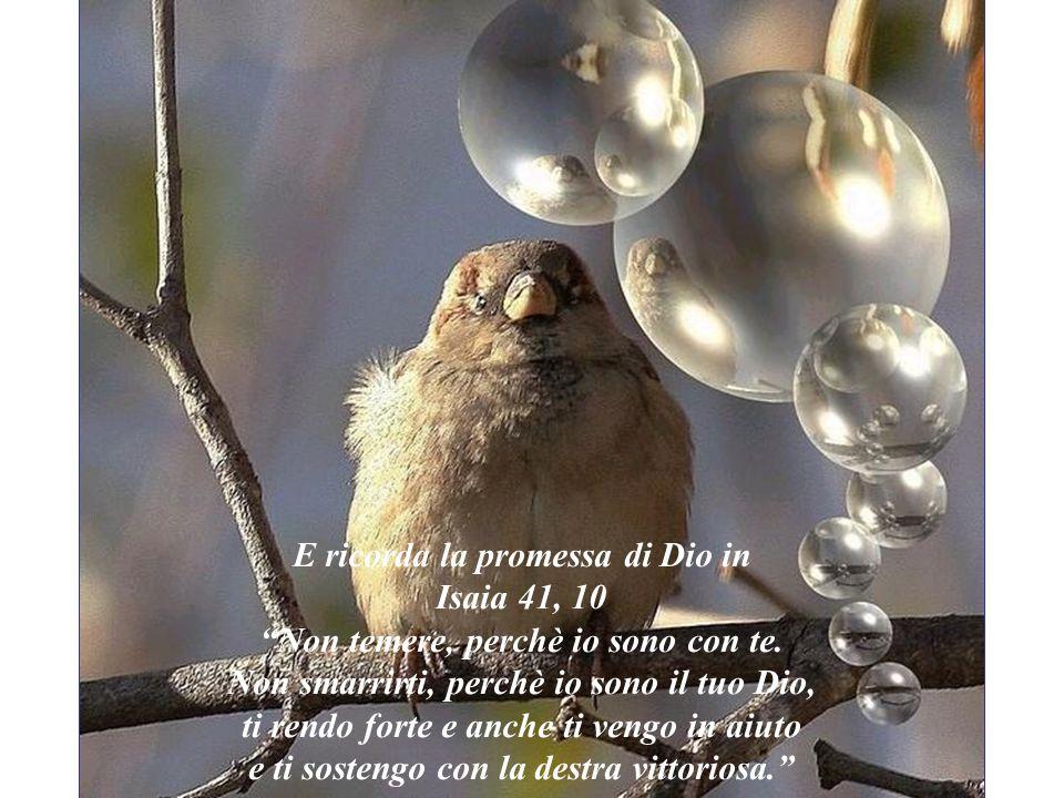 E ricorda la promessa di Dio in