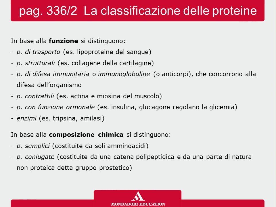 pag. 336/2 La classificazione delle proteine