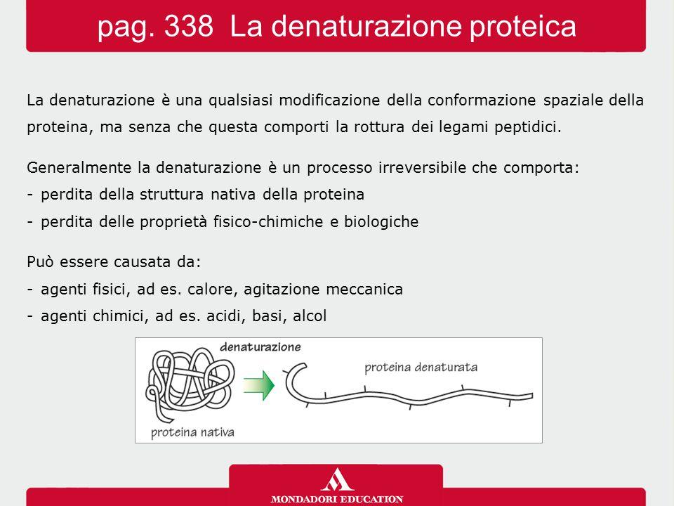 pag. 338 La denaturazione proteica