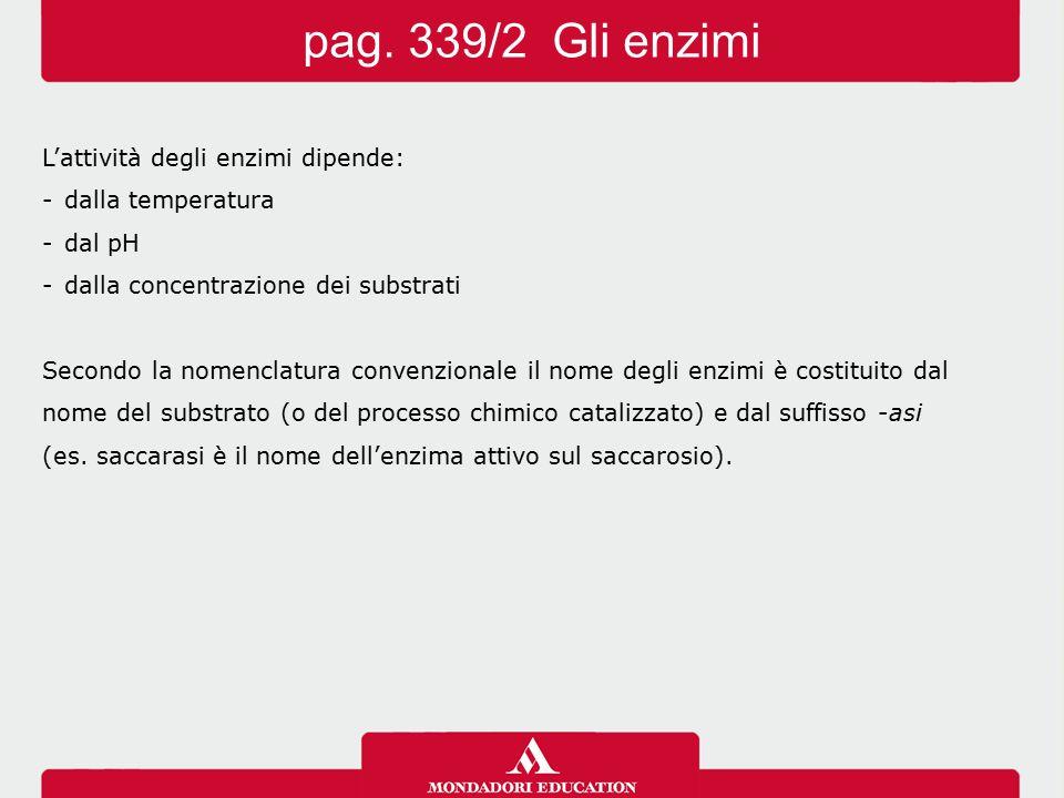 pag. 339/2 Gli enzimi L'attività degli enzimi dipende: