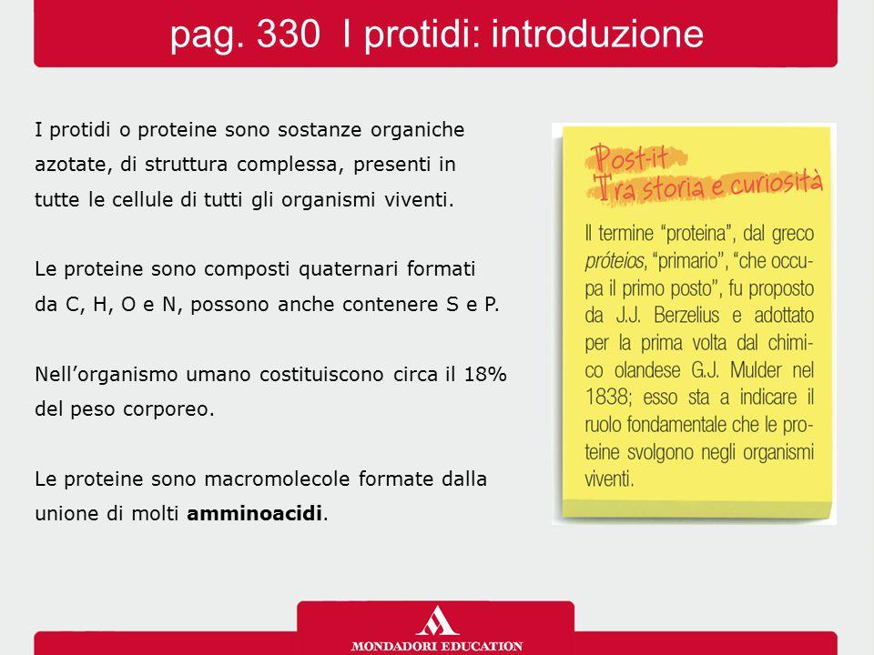 pag. 330 I protidi: introduzione