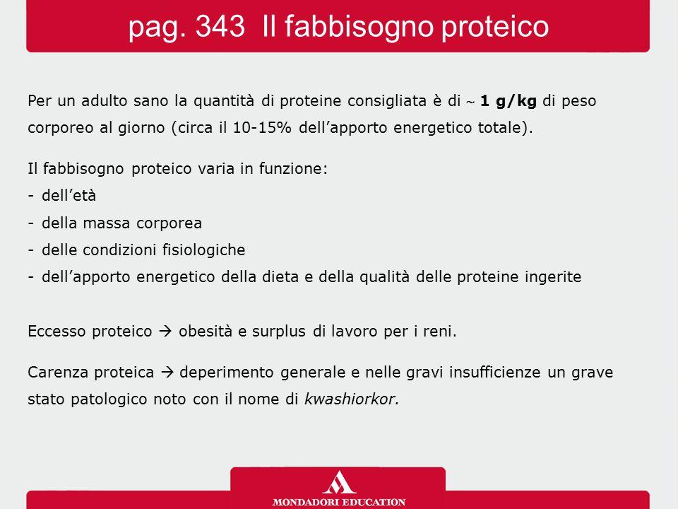 pag. 343 Il fabbisogno proteico