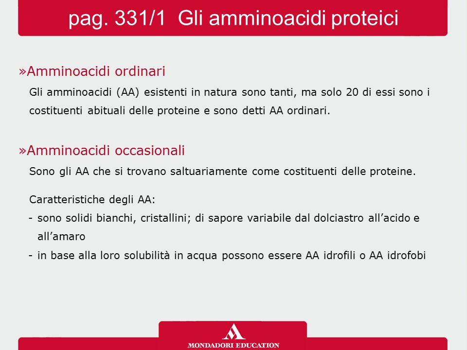 pag. 331/1 Gli amminoacidi proteici