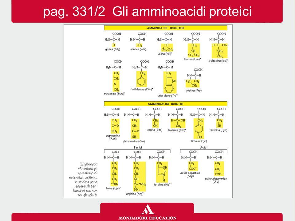 pag. 331/2 Gli amminoacidi proteici