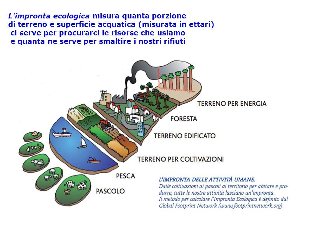 L impronta ecologica misura quanta porzione