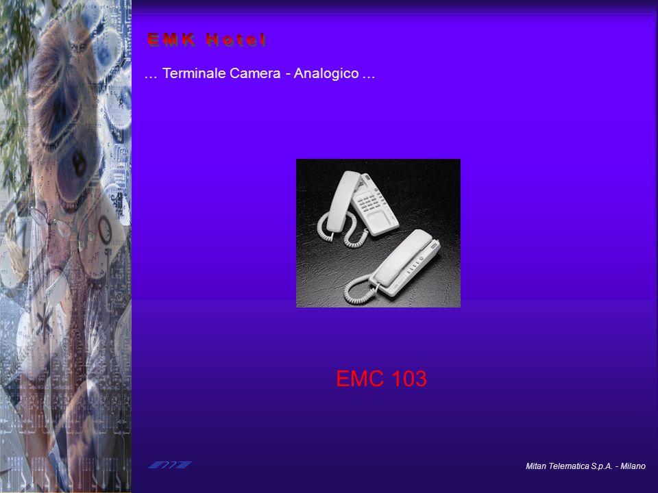EMK Hotel … Terminale Camera - Analogico … EMC 103