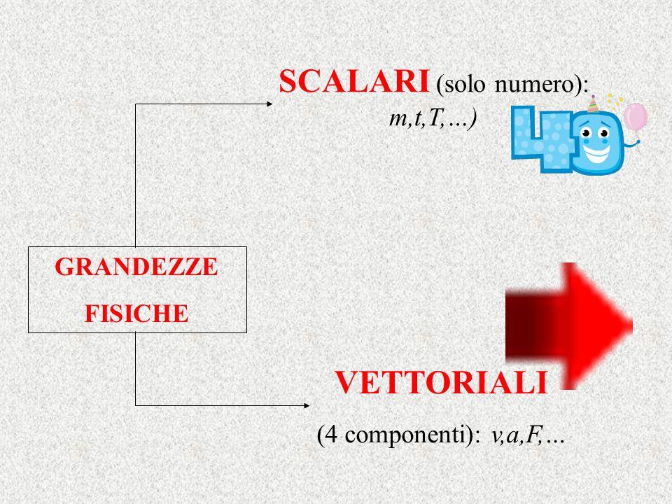 SCALARI (solo numero): m,t,T,…)