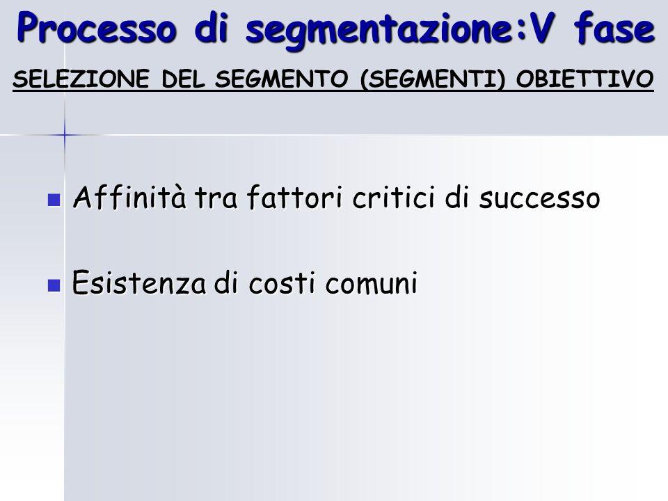 Processo di segmentazione:V fase