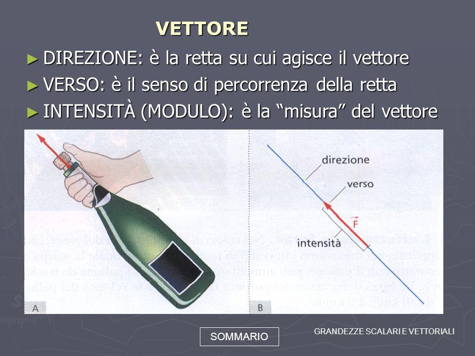 DIREZIONE: è la retta su cui agisce il vettore