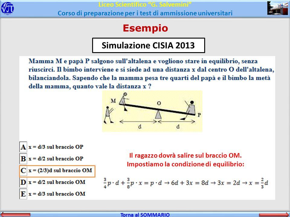 Esempio Simulazione CISIA 2013