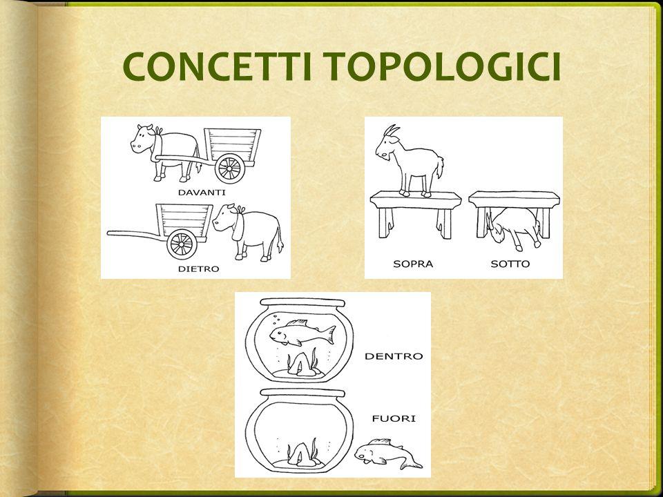 CONCETTI TOPOLOGICI