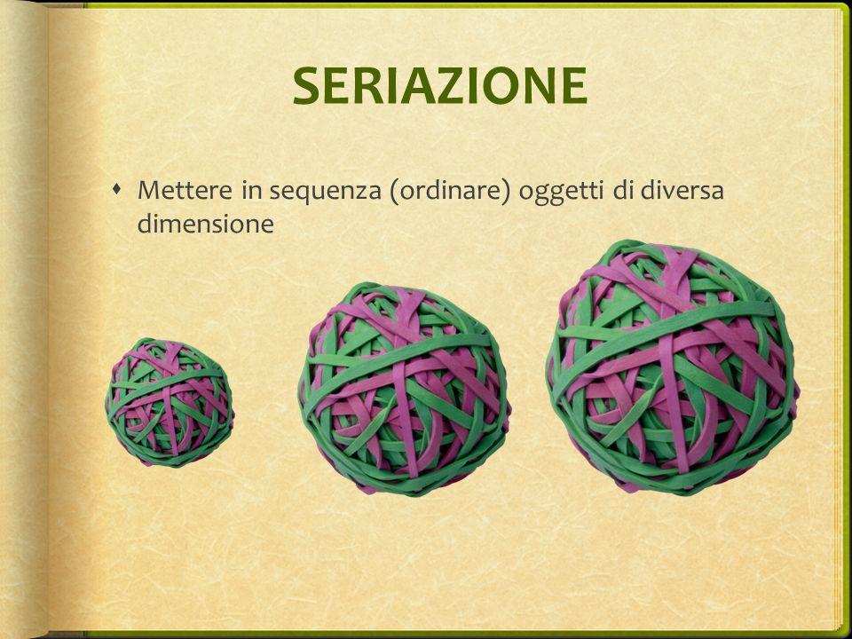 SERIAZIONE Mettere in sequenza (ordinare) oggetti di diversa dimensione
