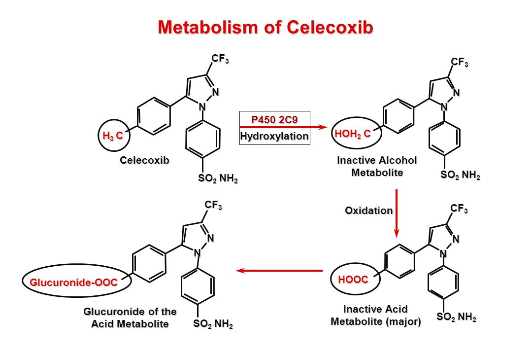 Metabolism of Celecoxib