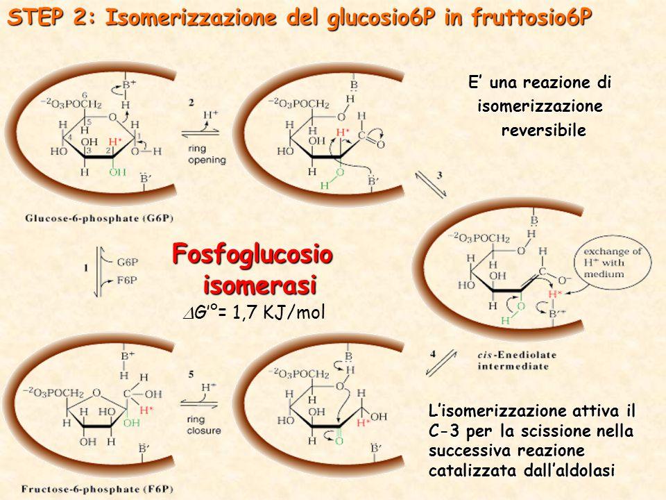 E' una reazione di isomerizzazione