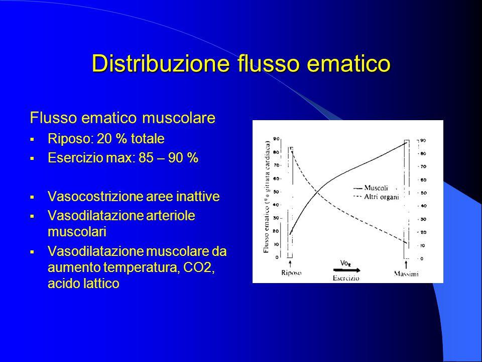 Distribuzione flusso ematico