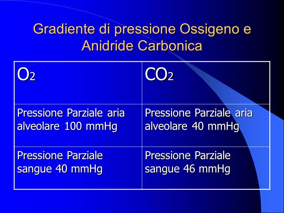 Gradiente di pressione Ossigeno e Anidride Carbonica