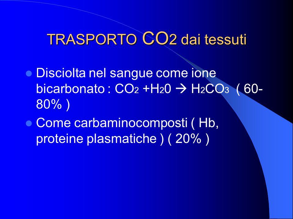 TRASPORTO CO2 dai tessuti