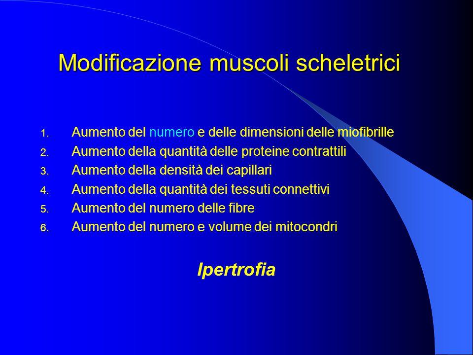 Modificazione muscoli scheletrici