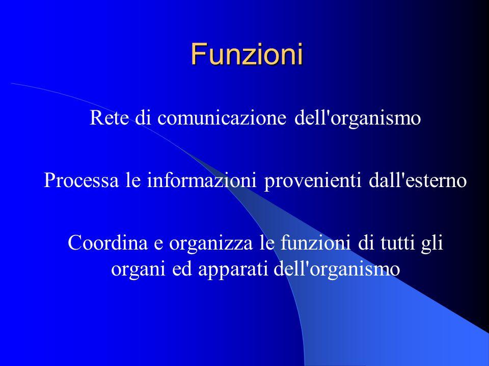 Funzioni Rete di comunicazione dell organismo