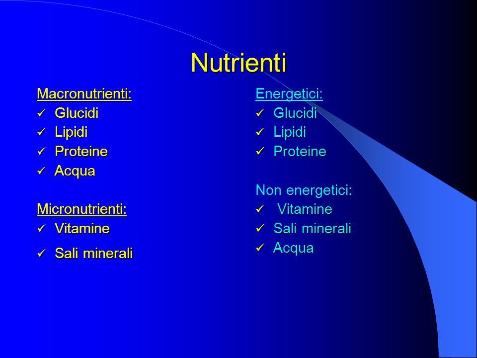 Nutrienti Macronutrienti: Glucidi Lipidi Proteine Acqua