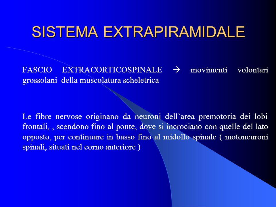 SISTEMA EXTRAPIRAMIDALE