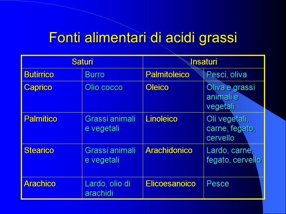 Fonti alimentari di acidi grassi