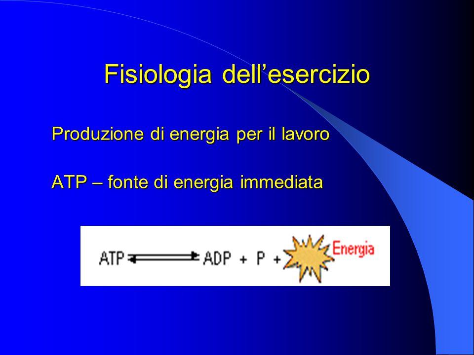Fisiologia dell'esercizio