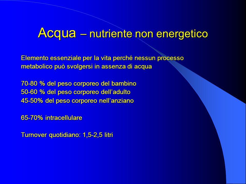 Acqua – nutriente non energetico