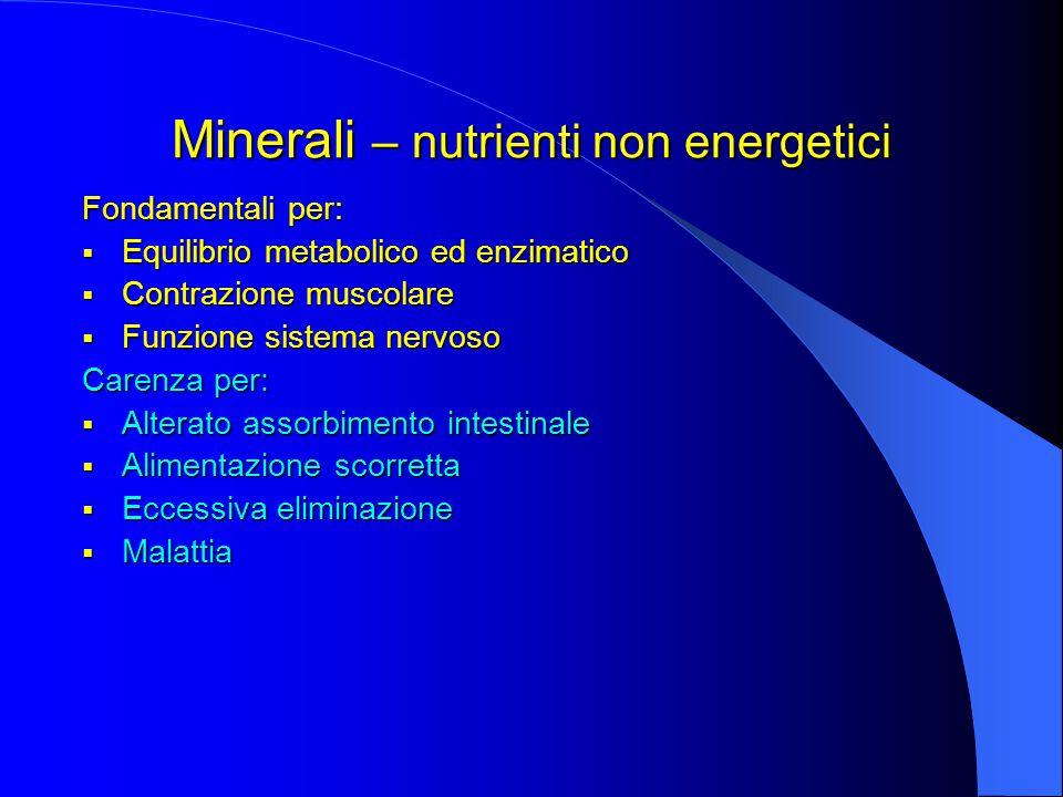 Minerali – nutrienti non energetici
