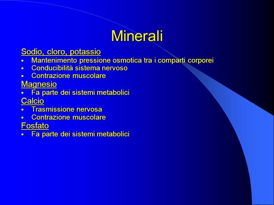 Minerali Sodio, cloro, potassio Magnesio Calcio Fosfato