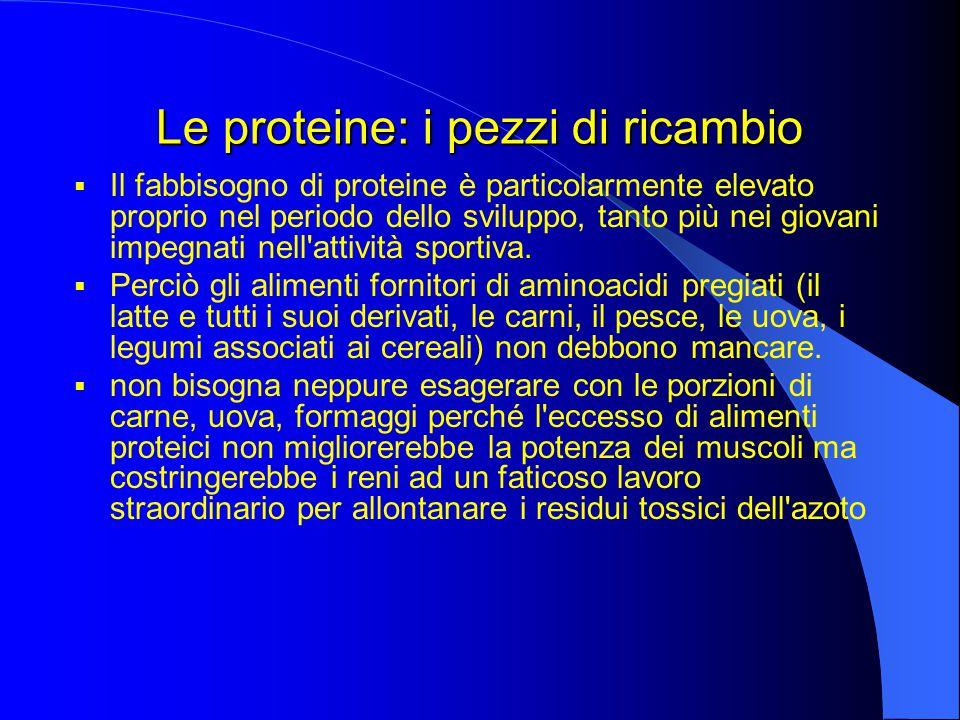 Le proteine: i pezzi di ricambio