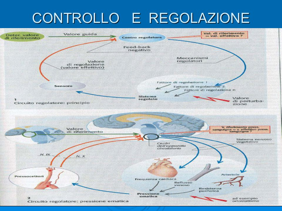 CONTROLLO E REGOLAZIONE