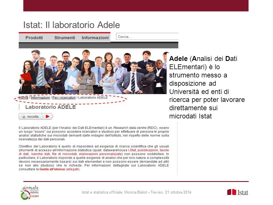 Istat: Il laboratorio Adele