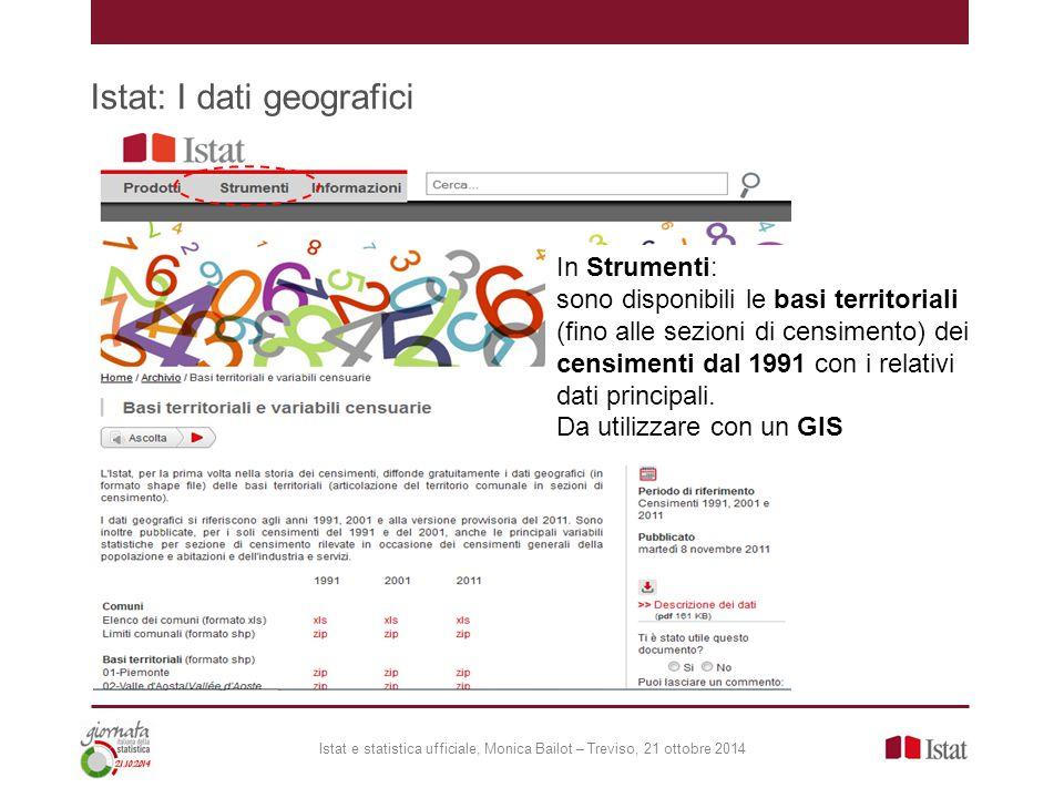 Istat: I dati geografici