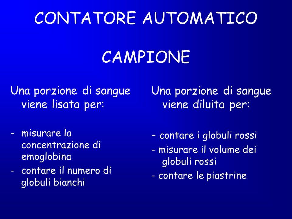 CONTATORE AUTOMATICO CAMPIONE