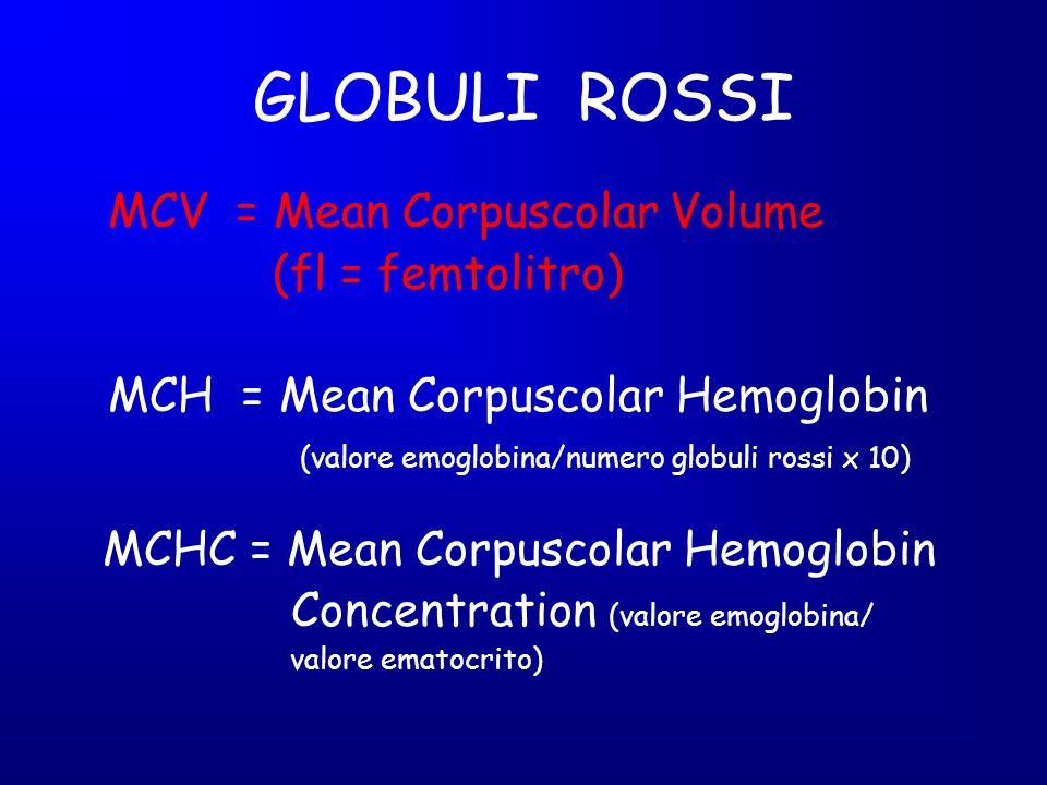 GLOBULI ROSSI (fl = femtolitro) MCHC = Mean Corpuscolar Hemoglobin
